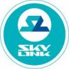 Поглощение «Скай Линк» компанией «Ростелеком»