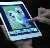Что вызывает сбой в работе приложений на Mac и iPhone